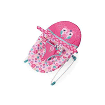 Bright Starts Happy Flowers Vibrating Bouncer - 11028
