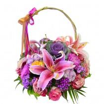 Fleurs de la Sagesse, Sweet Splendor