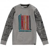 O'Neill, Boy's Archive Sweatshirt, Grey Aop
