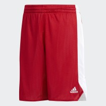 Adidas Boys' Basketball Reversible Crazy Explosive Shorts