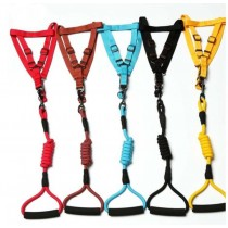 Bejiary, Polyster Pet Harness and Leash, Available in different colors and sizes